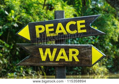 Peace - War signpost with forest background