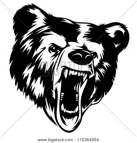 Bear 002