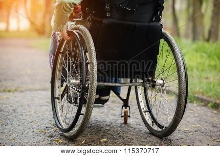 Back View Of Young Woman In  Wheelchair During Walk In Park