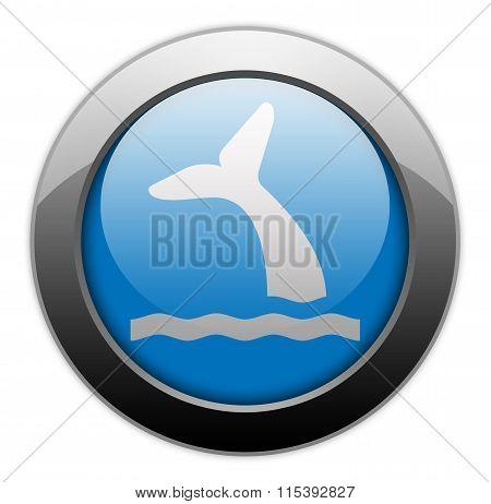 Icon, Button, Pictogram Whale