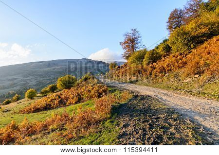 Mountain Path In Autumn Landscape. Panoramic View Over Mountain Path, Trees And Nature In Autumn Fal