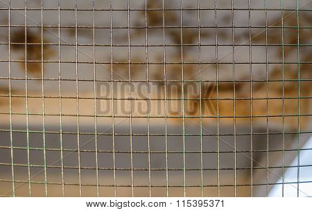Old Industrial Iron Wire Fence.  Close-up Of Metallic Shiny Net Over Rust Color Blurry Background In