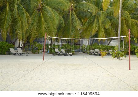Beach Volleyball Net On The Beach With Sun Chairs And Coconut Trees
