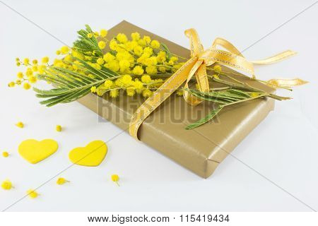 Bouquet Of Mimosa Pudica And A Wrapped Present