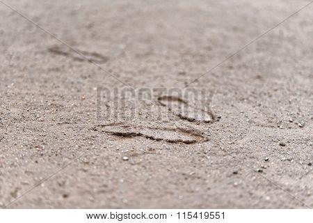 Three Footprints In Mud
