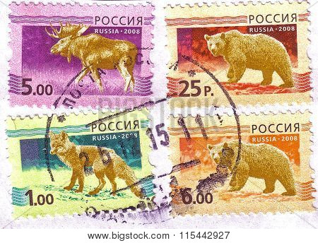 Russia-circa 2008: A Four Stamps Printed In The Russian Federation, Depicts A Male Elk With Antlers,