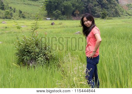 Thai Woman With Terraced Rice Field, Pha Mon Chiangmai Thailand