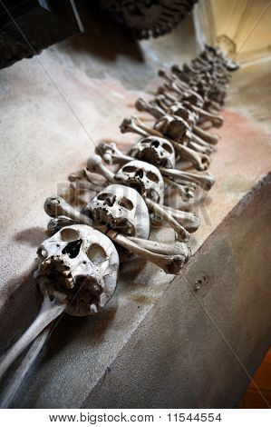 Sculls And Bones On The Wall