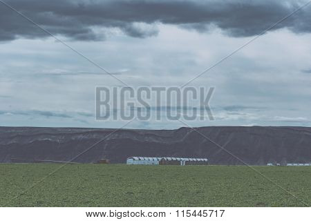 View over wheat fields from Steptoe Butte, Palouse Valley, eastern Washington State.