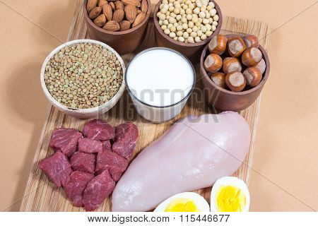 Natural Products Containing Plant And Animal Proteins.
