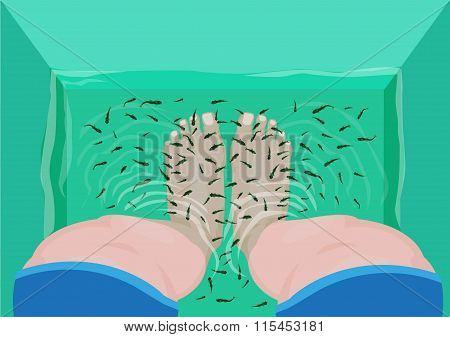 Fish Pedicure or Massage concept. Top View of Feet in a Spa Massage Tub Filled with Doctor Fish or G