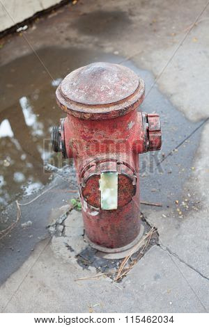 Abandoned Fire Hydrant