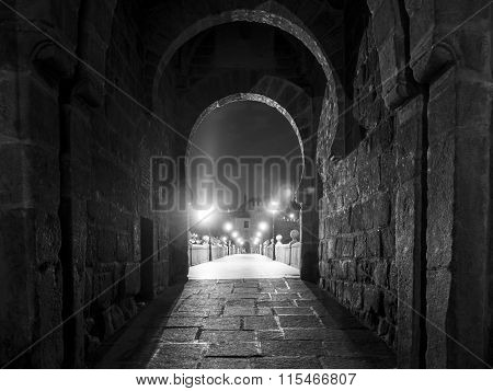 Toledo / San Martin bridge
