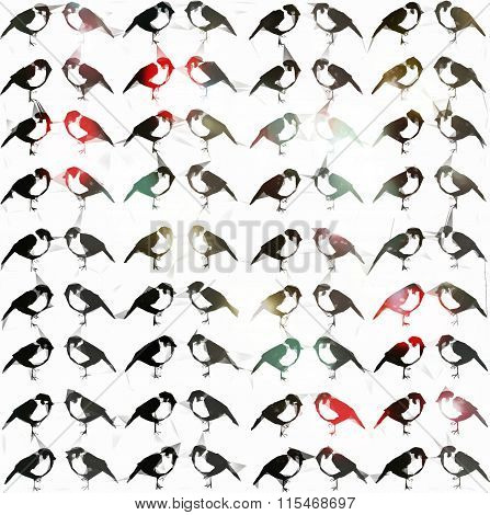 Background Sparrows