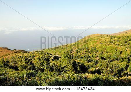 Valley Of Ribeira Filipe
