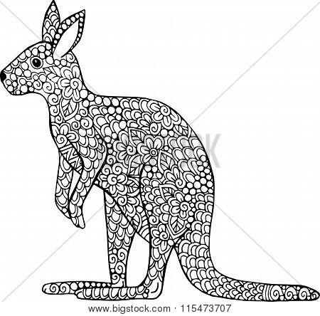 Hand drawn vector kangaroo illustration.