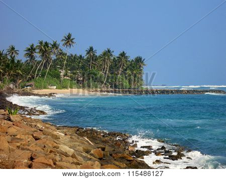 Empty beach with greens, rocks and sand, Sri Lanka