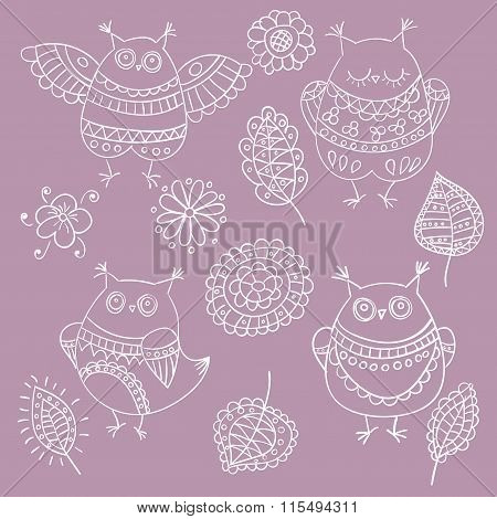 Collection Of Vector Owls, Leaves And Flowers For Design