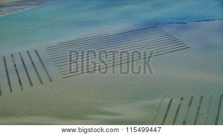Aerial Of Oyster Farm