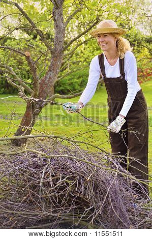 Young woman cleaning tree limbs