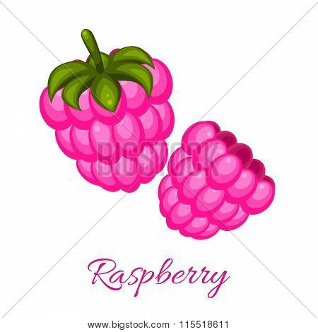 Pink Raspberry Logo Vector Icon.