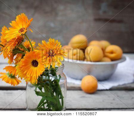 Juicy apricots