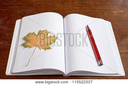 Leaf and pen on the copybook