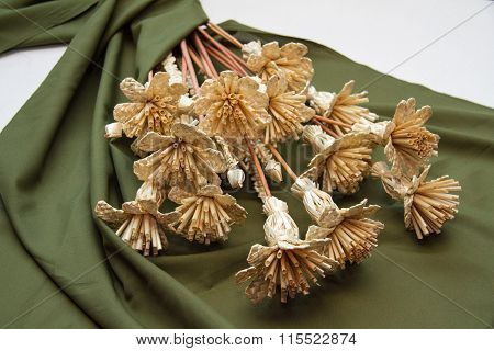 beautiful wattled flowers from straws