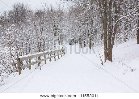 Blanco nevado invierno