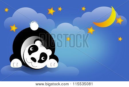 Panda Bear On Night Sky