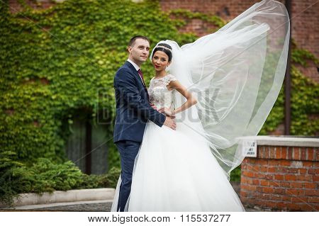 Newlywed Valentynes Hugging In A Park Vines Background Wind Blowing The Veil
