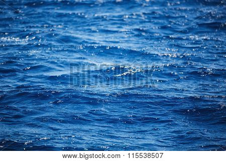 Flowing Water Surface.  Background Of Carribean Sea Waves, Near Punta Cana