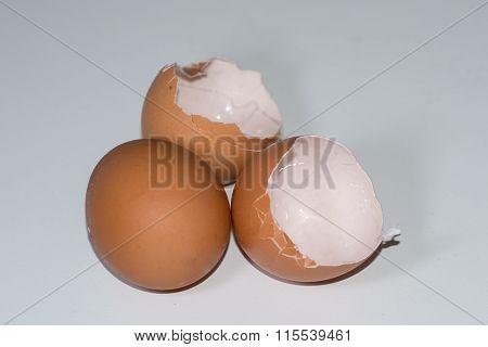 on brown egg, people food