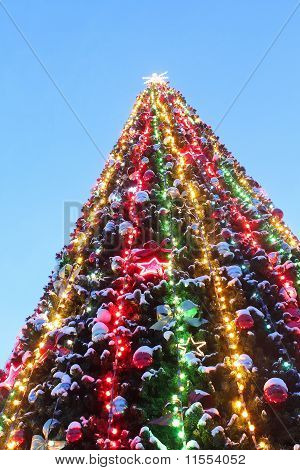 Christmas Tree On The Blue Sky