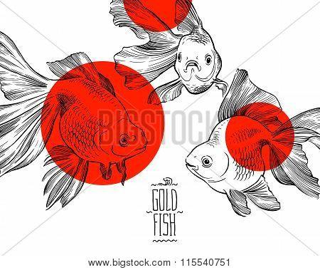 Goldfish illustration artwork  line underwater point  zen meditation