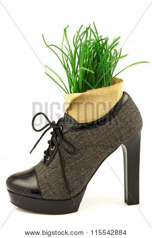 Spring Creative Concept With Fresh Grass And Boot With High Heel