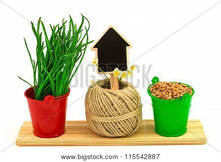 Spring Concept With Grass, Decorative Flowers, Hank, Seeds In The Buckets