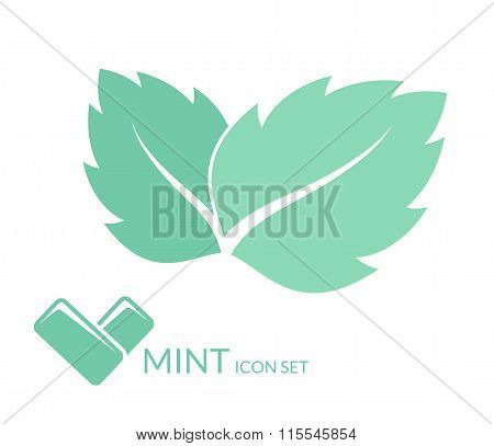 Mint. Chewing gum