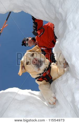 Ski Patrol and Rescue Dog Team