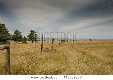Old Barbed Wire Fence In Dry Field