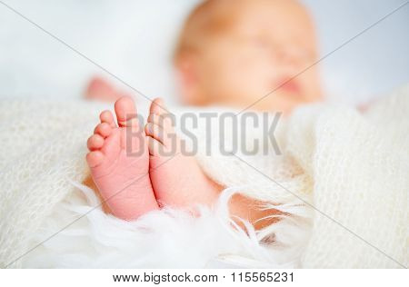 Foot Leg Newborn Baby Sleeping