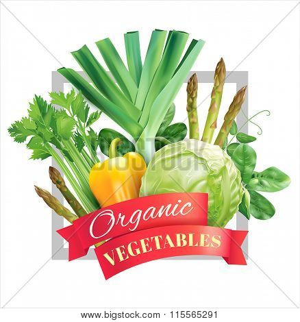 Composition with natural vegetables. Vector illustration.