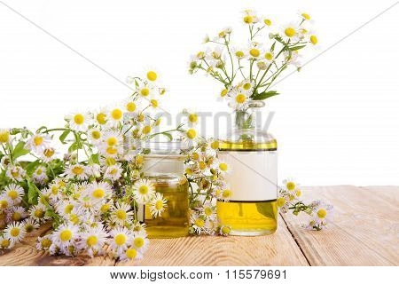Herbal Medicine Concept - Bottles With Camomile And Oil On Wooden Table