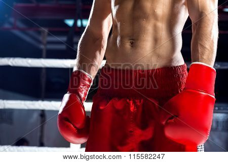Skillful boxing champion is going for sports