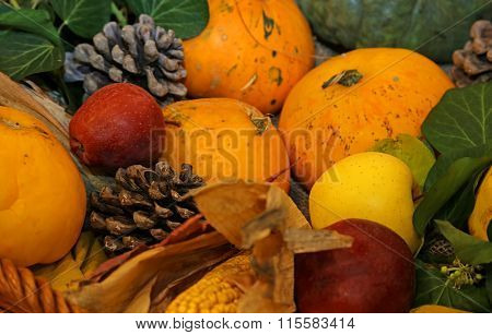 Pumpkin And Other Fresh And Dried Fruits In Autumn Season