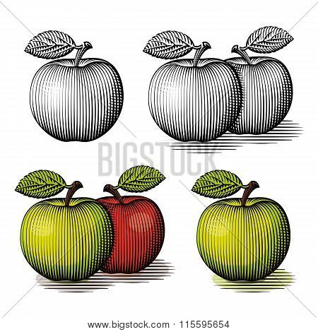 Engraved Green And Red Apple.
