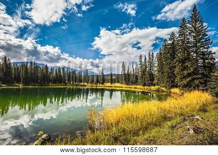 The small superficial lake is surrounded with coniferous forest. The smooth surface of water reflects the cloudy sky. Autumn day in Jasper National Park  in Canada