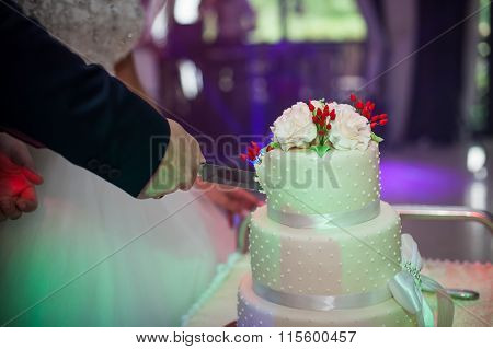 Newlyweds Carving A Delicious Tiered White Wedding Cake Decorated With Roses And A Ribbon Closeup