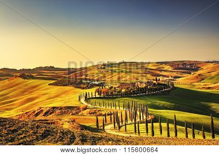 Tuscany, Crete Senesi Rural Sunset Landscape. Countryside Farm, White Road And Cypress Trees.