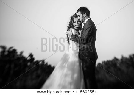 Fairytale Romantic Couple Of Newlyweds Hugging At Sunset In Vineyard Field Wth Bushes B&w